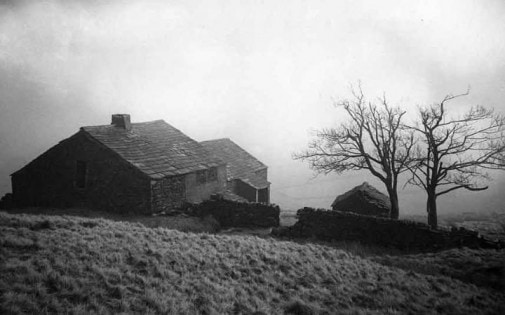 Wuthering Heights (1)